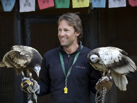 Raptor Workshops