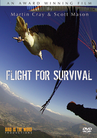 flight for survival