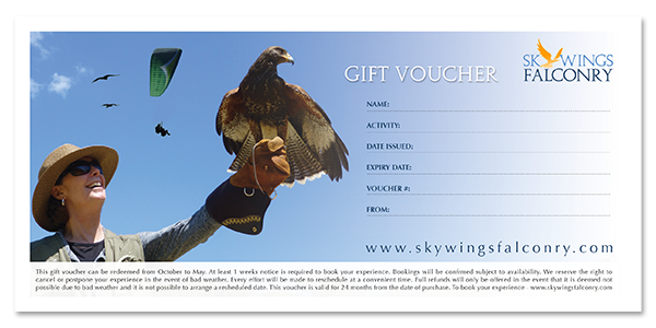 Bird of Prey Experience - Gift Voucher