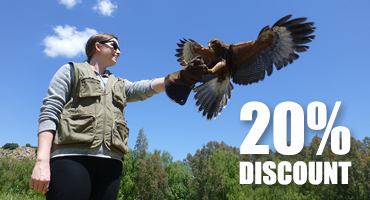 Introduction to Falconry - 20% Winter Discount